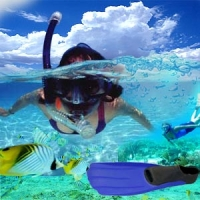 Try Snorkeling